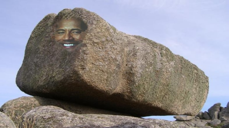 The Rock Got Married! 6 Books About Rocks!