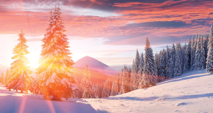 5 Poems To Get You In The Mood For Winter