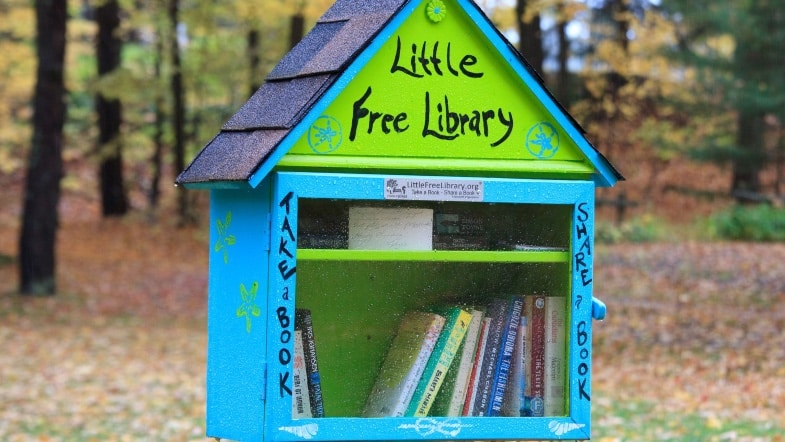 Little Free Libraries Help Promote Racial Diversity