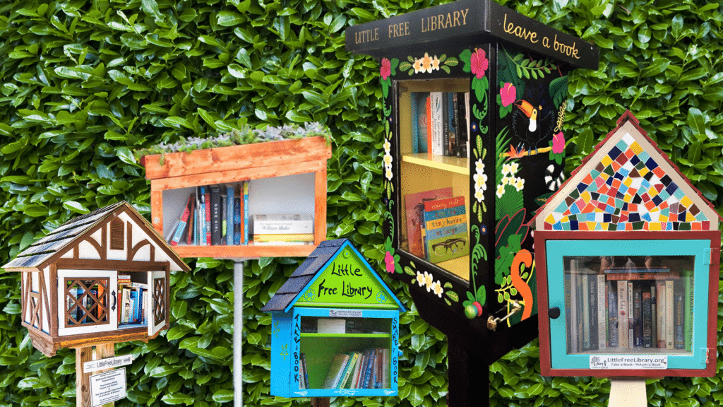 Why Everyone Should Visit a Little Free Library