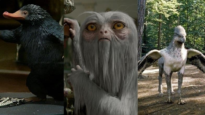 10 Harry Potter Creatures That Exist In Real Life